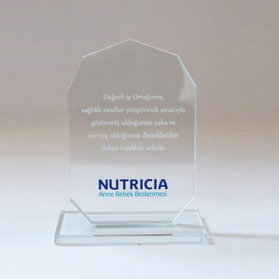 Nutricia firması ile firmamızın gerçekleştirdiği güzel işbirliklerine istinaden teşekkür plaketi