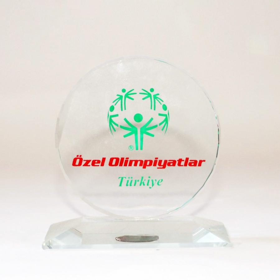 Özel Olimpiyatlar Türkiye Ödülü